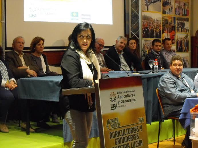 Elisa Fernandez UPA Toledo
