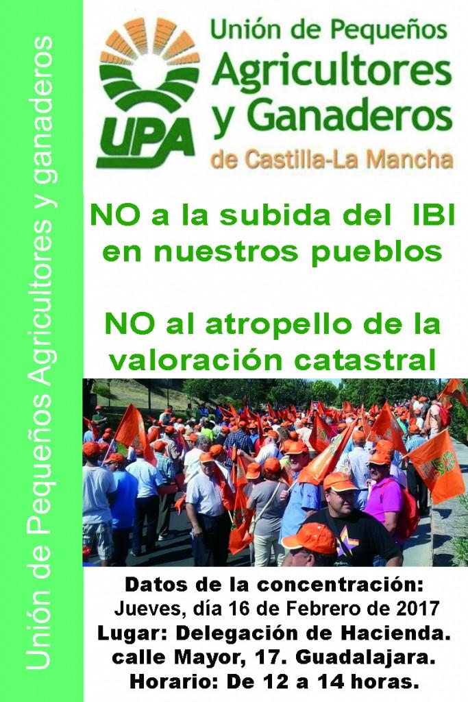 Concentración Guadalajara_IBI_febrero_2017